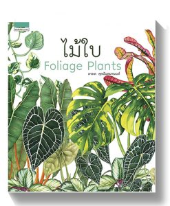 ไม้ใบ : Foliage Plants